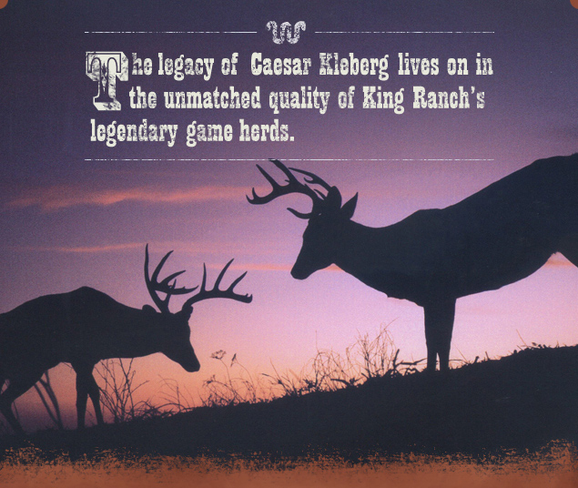 King Ranch Kingsville, Texas