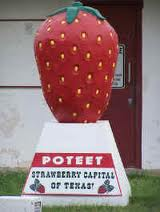 Poteet, Texas Strawberries Strawberry Festival Statue