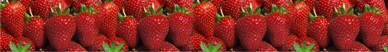 Poteet, Texas Strawberries